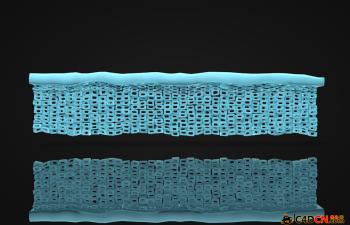 皮肤表皮组织结构模型