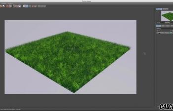 C4D教程 - 如何使实现的草部分