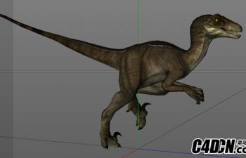 恐龙绑定带动作05