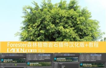 Forester 1.1.0森林植物岩石汉化版插件+教程网盘下载