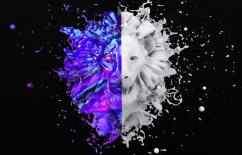 使用C4D+RF+AE制作 Color Dreamer 打造炫酷品牌视觉