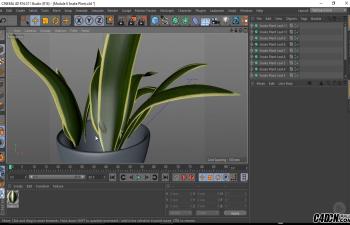 CINEMA 4D    建模一个照片级的室内场景模型