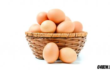 C4D插件 Egg Object v2 鸡蛋生成插件中文汉化版