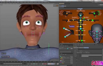C4D 角色模板教程 character rigging FamilyMan