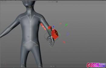 C4D教程 人物胳膊骨骼綁定穿戴物品跟隨骨骼動畫運動模擬教程