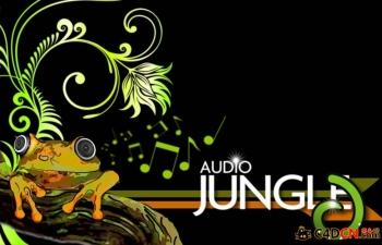 Audiojungle音乐全套!!