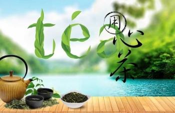 淘宝茶叶店铺海报设计 PSD分层素材
