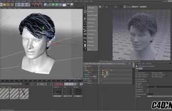C4D阿诺德渲染器如何使用毛发着色器教程