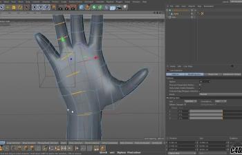 C4D教程 骷髅头和手部建模教程