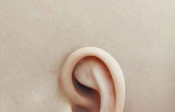 Octane渲染器人类耳朵C4D模型