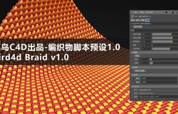 菜鸟C4D编织物脚本预设1.1 Bird4d Braid v1.1