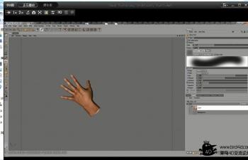 C4D 手部贴图绘制Hand Texturing, BodyPaint,