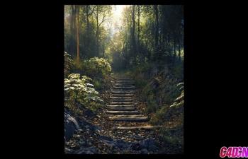 C4D教程 Octane渲染器丛林小路森林植物自然环境山区渲染教程