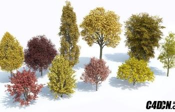 植物树木场景生成插件预设 Laubwerk Plants