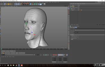 CINEMA 4D教程——人体头部速度建模