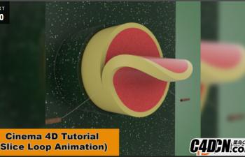 NIKO教程:循环切片动画教程